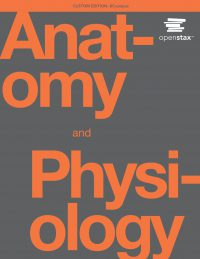 otb001-01-anatomy_physiology-2covers-print