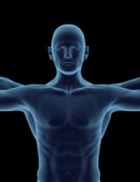 Kinetics & Kinesiology